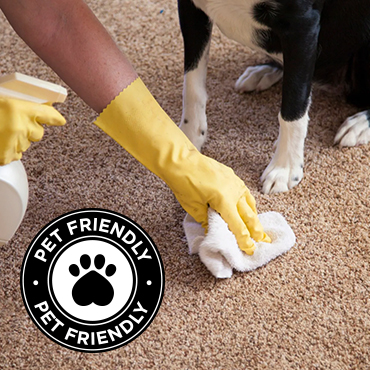 Pet Friendly Cleaning